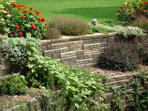 Retaining wall terrace with plants