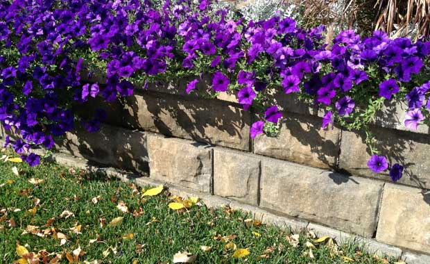 retaining wall planter-AB Fieldstone Collection
